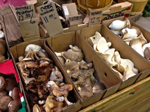 Mushrooms at the St Lawrence Markets.