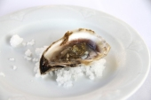 Oyster with something jelly. I ate three of them because Antony and Glen don't eat oysters.