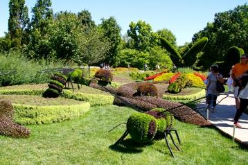 Belgium, The Insects' Garden