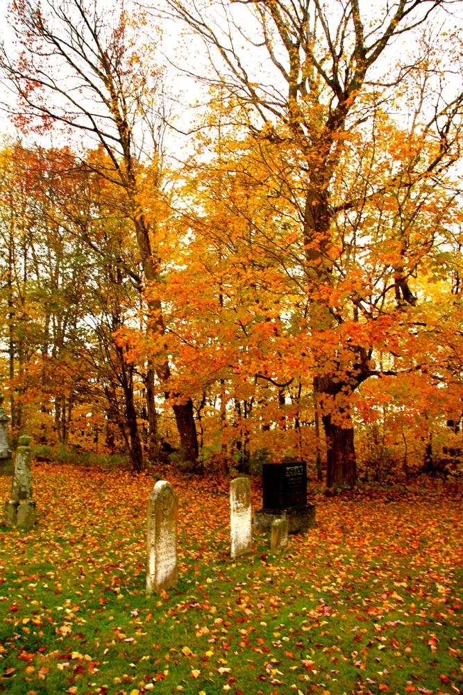 Fall colour around St Mark's