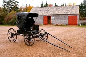Buggy and one of the farm buildings