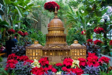 Capitol Hill made out of plants