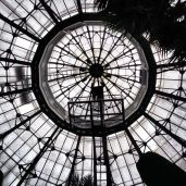 Roof inside the Palm House