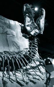 T-Rex eating the sun