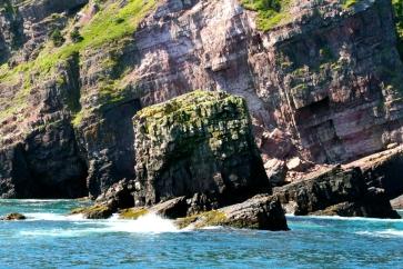Witless Bay coastline