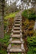 Steps on the Skerwink