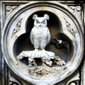 Owl carving in Central Park