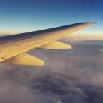 Light on the wing
