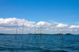 Bay of Fundy