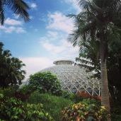 Botanical Dome