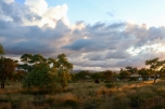 Eco retreat at dusk