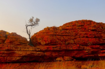 Kings Canyon at (near) dawn