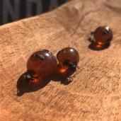 Honey ants